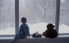 Fiberglass Fixed Windows Winter